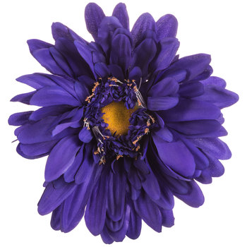 Purple Giant Gerbera Daisy Stem